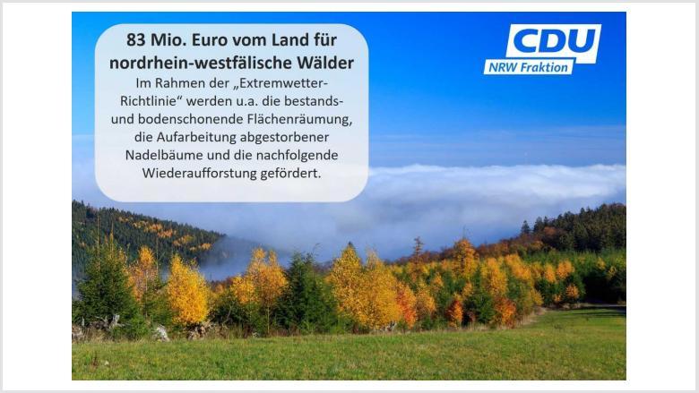 Die Extremwetter-Richtlinie des Landes wird 2021 nochmals um 50 Millionen Euro aufgestockt.